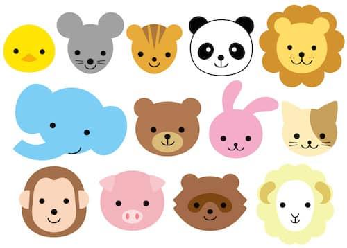 BTSメンバーに似ている動物