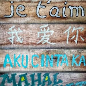 ジョシュアは5ヶ国語も話せるの?